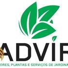 Advir logo (1)