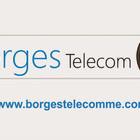 Borgestelecom