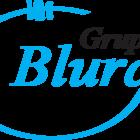 Logo grupo bluray