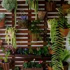 Jardim vertical treli%c3%a7a madeira 2