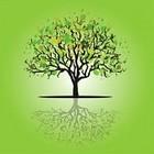 19315653 tree card