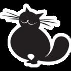 Gato transp