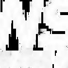 Logo insait invertida email