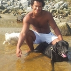 Adestrador e Dog Walker