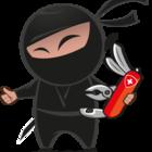 Get ninjas 2