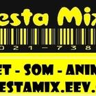 Festamix logo duplo