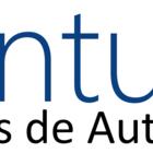 Logo pontuall