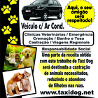 Taxi dog panfleto