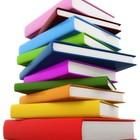 Livros pontes