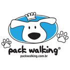 Adestramento, Dog Walker, D...