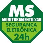 Ms seguran%c3%a7a logo