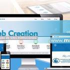 Ms web