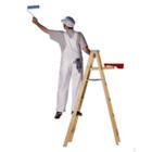 Pintor parede (1)