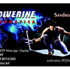 Wolverine inform%c3%a1tica   cart%c3%a3o novo